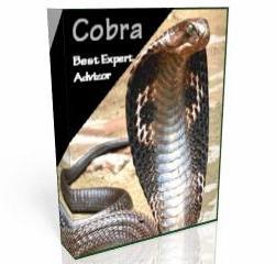 Торговый робот Cobra - Cobra